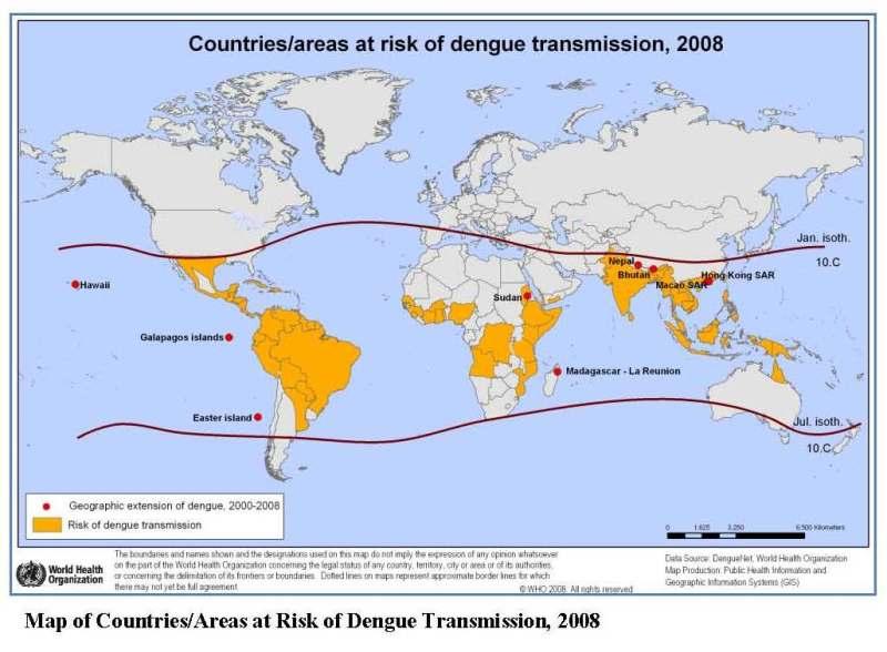 dengue_map