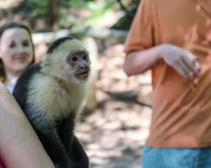 Roatan Monkeys (22 of 29)