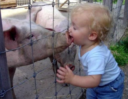 kid_kissing_pig