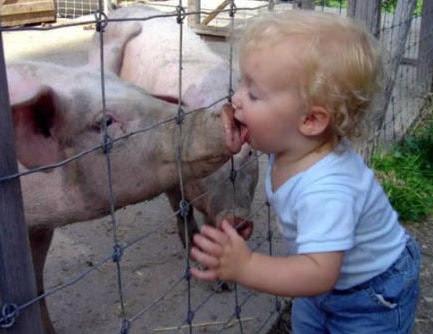 kid_kissing_pig