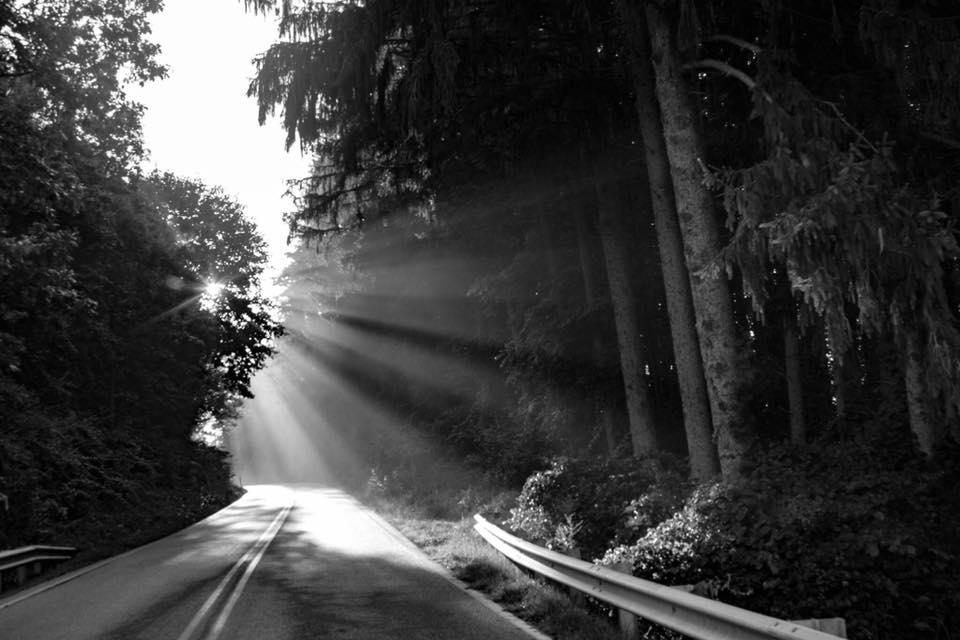 drive_sunlight