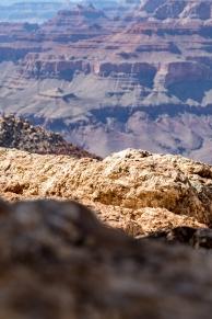 grand_canyon_2017-156